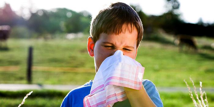 Иммунолог рассказал, каких болезней нужно опасаться летом